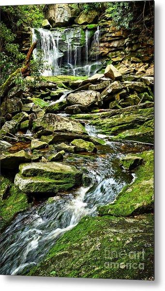 Elakala Falls At Blackwater Falls State Park Metal Print