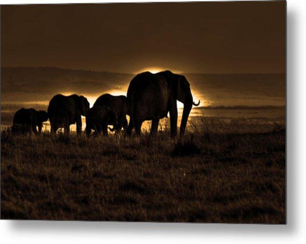 Elephant Herd On The Masai Mara Metal Print
