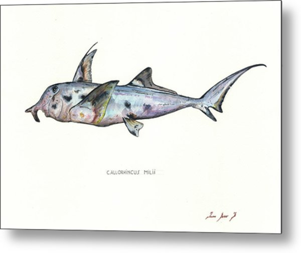 Elephant Shark Metal Print