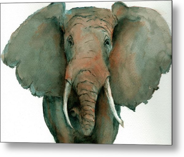 Elephant Up Close Metal Print