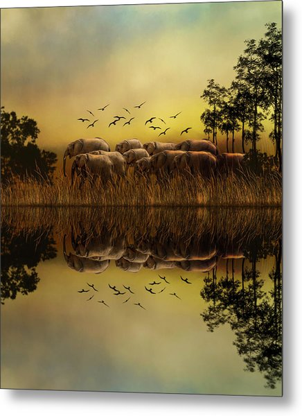 Elephants At Sunset Metal Print