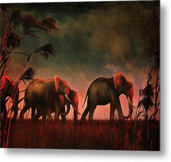 Elephants Walking Together Metal Print