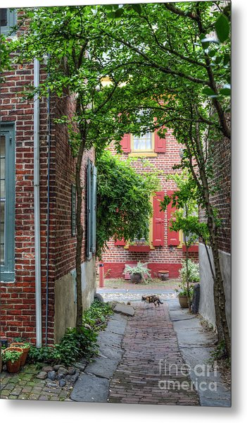 Calico Alley  Metal Print
