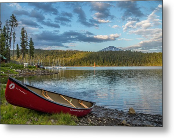 Elk Beach Memories Metal Print