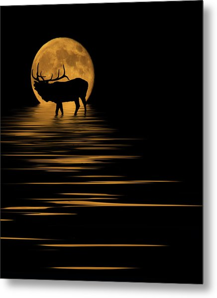 Elk In The Moonlight Metal Print