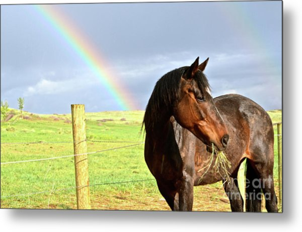 Ella And The Rainbows Metal Print