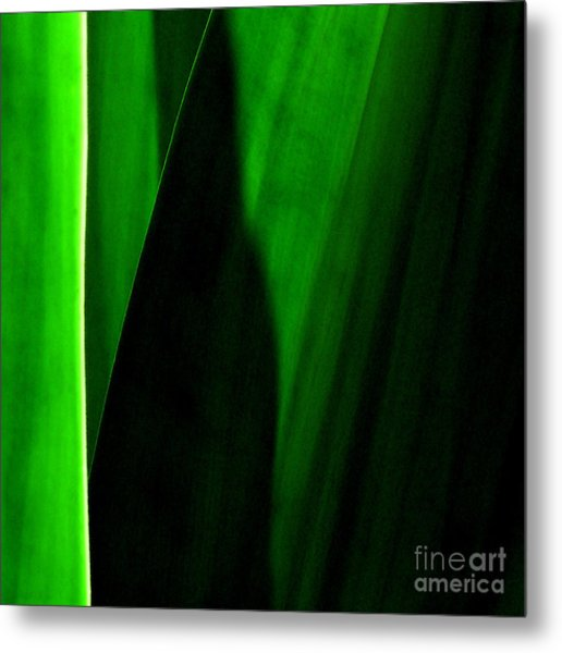 Emerald Metal Print by James Temple