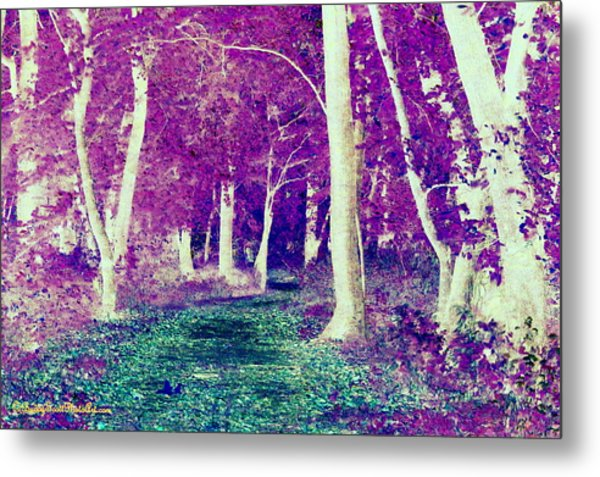 Emerald Path Metal Print