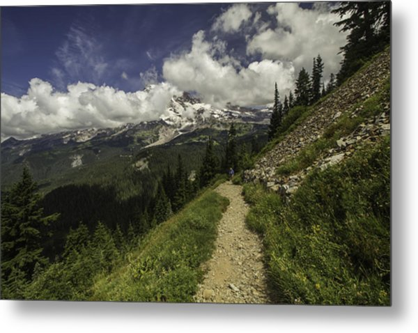 Emerging Above Timberline Metal Print