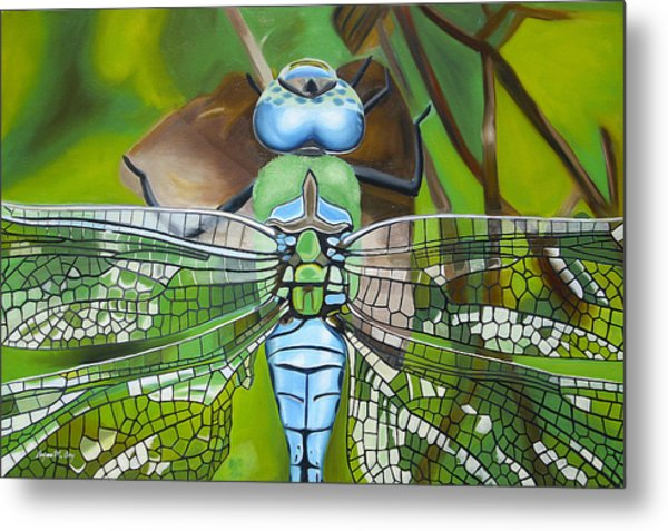 Emperor Dragonfly Metal Print by Bryan Ory