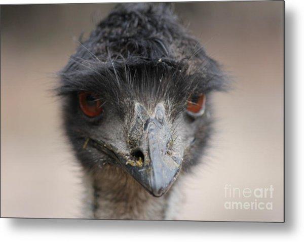 Emu Metal Print by Roo Printz