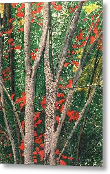 Enchanted Birches Metal Print