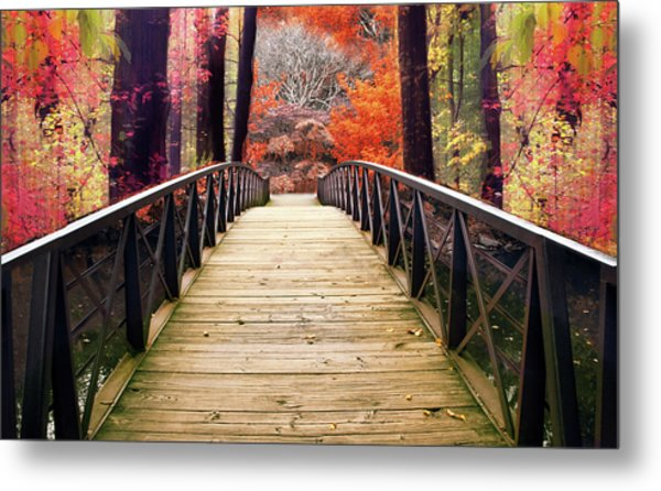 Metal Print featuring the photograph Enchanted Crossing by Jessica Jenney