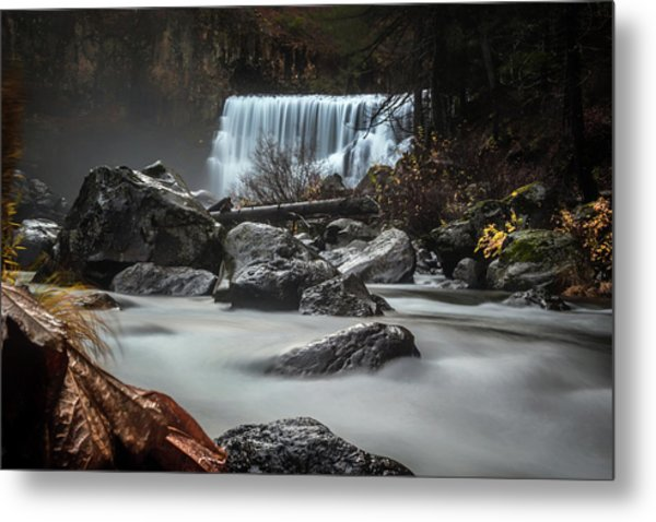End Of Fall Metal Print