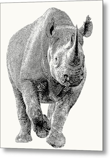 Endangered Black Rhino, Full Figure Metal Print