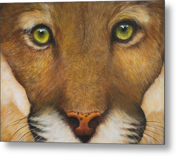 Endangered Eyes Metal Print
