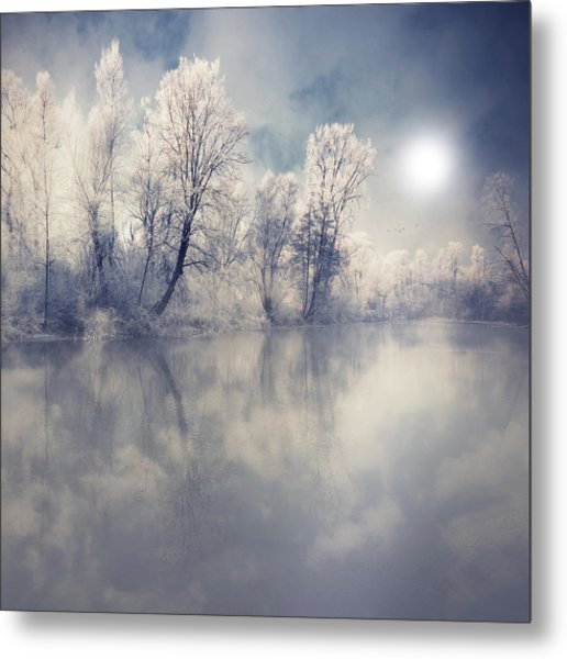 Endless Metal Print by Philippe Sainte-Laudy Photography