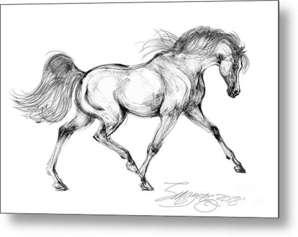 Endurance Horse Metal Print