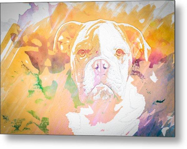 English Bulldog Wc Metal Print