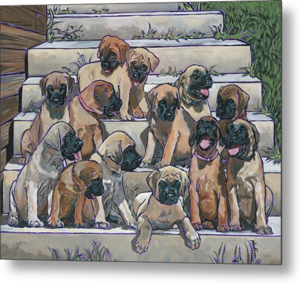English Mastiff Puppies Metal Print