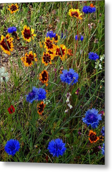 English Cottage Garden Flowers 4 Metal Print