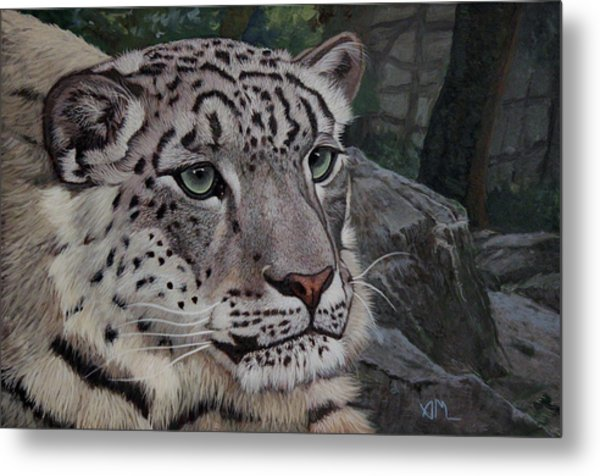 Enif- Snow Leopard Metal Print