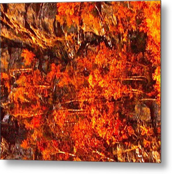 Enigma Orange Metal Print by Chris  Riley