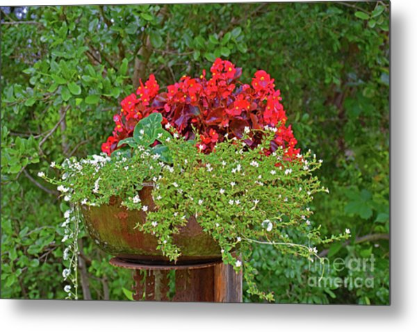 Enjoy The Garden Metal Print
