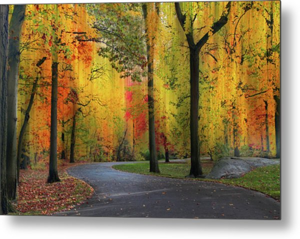 Metal Print featuring the photograph  Ensconced In Autumn by Jessica Jenney