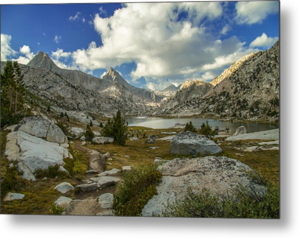 Entering Evolution Basin Metal Print