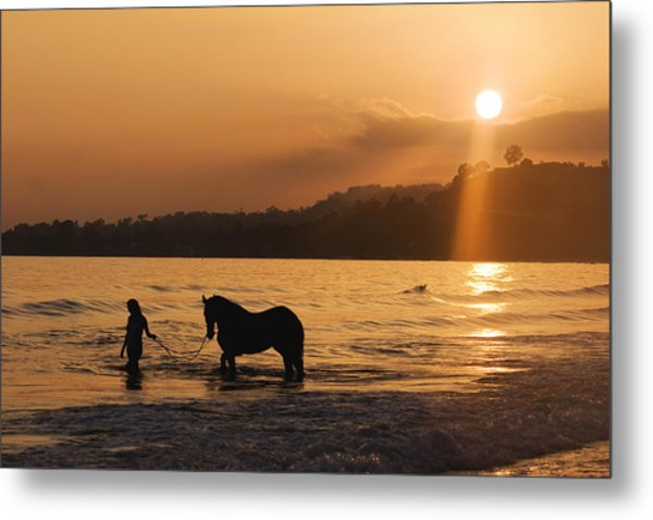 Equine Beach Time Metal Print by Nick Sokoloff