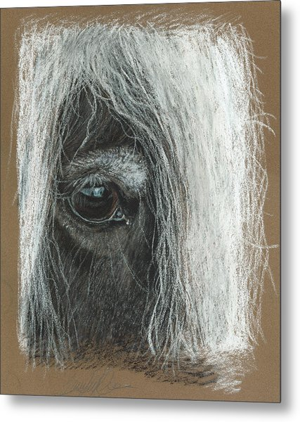 Equine Eye Detail Metal Print by Terry Kirkland Cook
