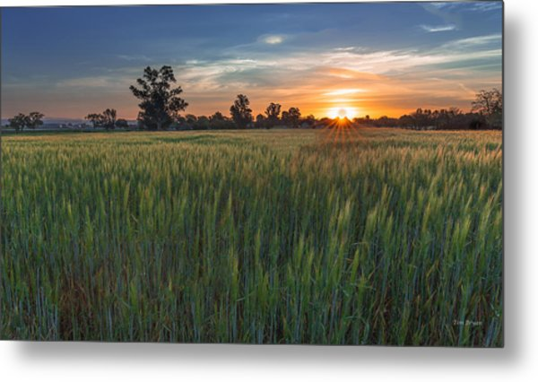 Equinox-first Sunrise Of Spring Metal Print
