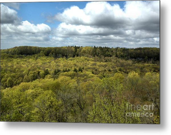 Escarpment Spring 1 Metal Print