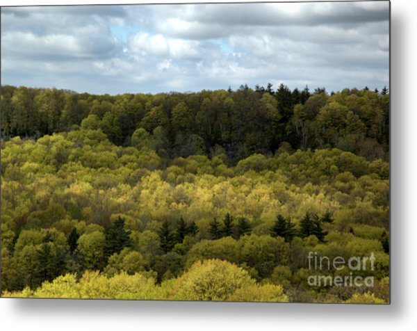 Escarpment Spring 2 Metal Print