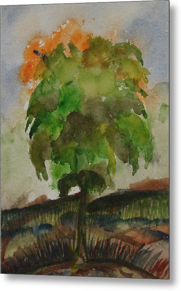 Esoteric Tree Metal Print by Aim to be Aimless