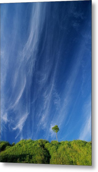 Essence Of One      Metal Print