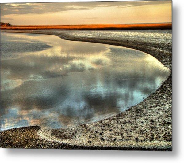Estuary Metal Print