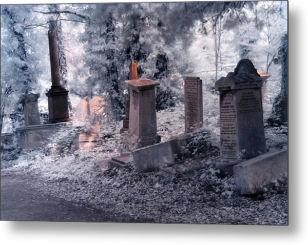 Metal Print featuring the photograph Ethereal Walk by Helga Novelli