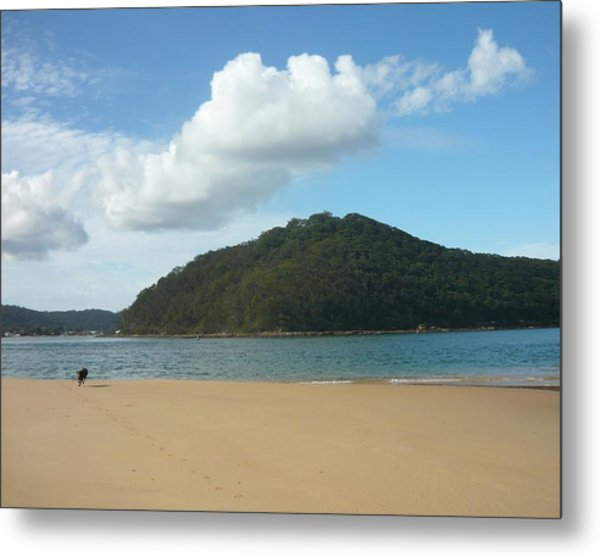 Ettalong Beach Metal Print by Adrianne Wood