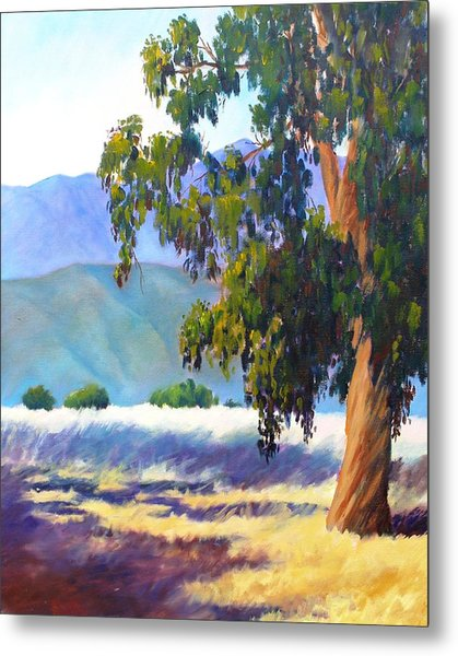 Eucalyptus On The Bluffs Metal Print by Dorothy Nalls