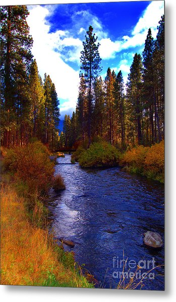 Evening Hatch On The Metolius River Photograph Metal Print