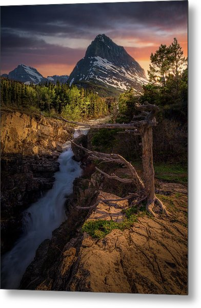 Evening Light / Swiftcurrent Falls, Glacier National Park  Metal Print