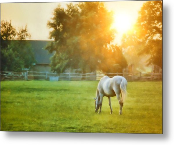 Evening Mist Metal Print by JAMART Photography