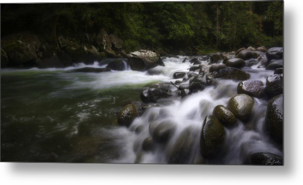 Evening On The Sarapiqui River Metal Print