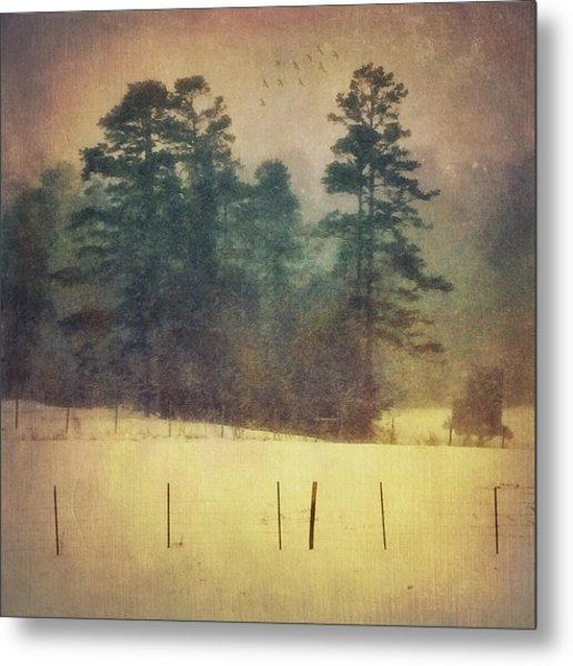 Evening Snow Glow Metal Print