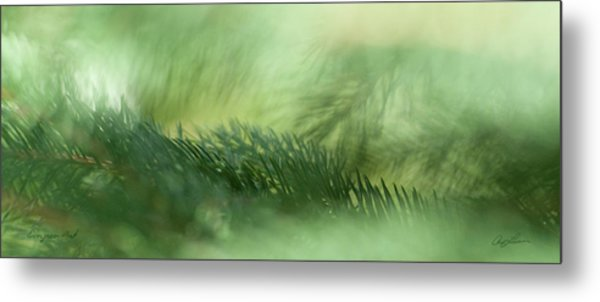 Evergreen Mist Metal Print