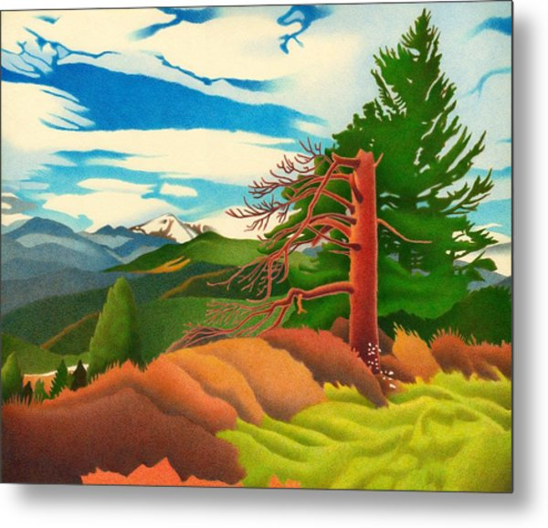 Evergreen Overlook Metal Print