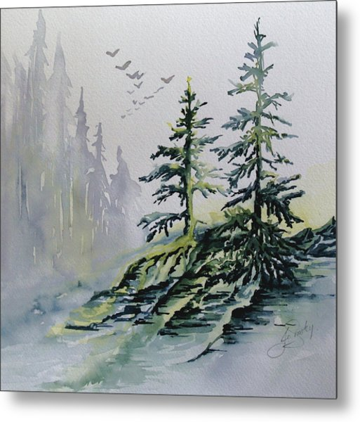 Evergreens In The Mist Metal Print