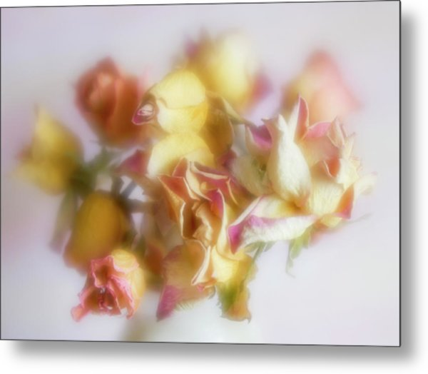 Everlasting Rose Buds Metal Print